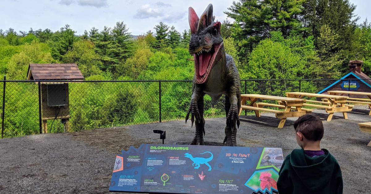 kid looking at dinosaur with sign