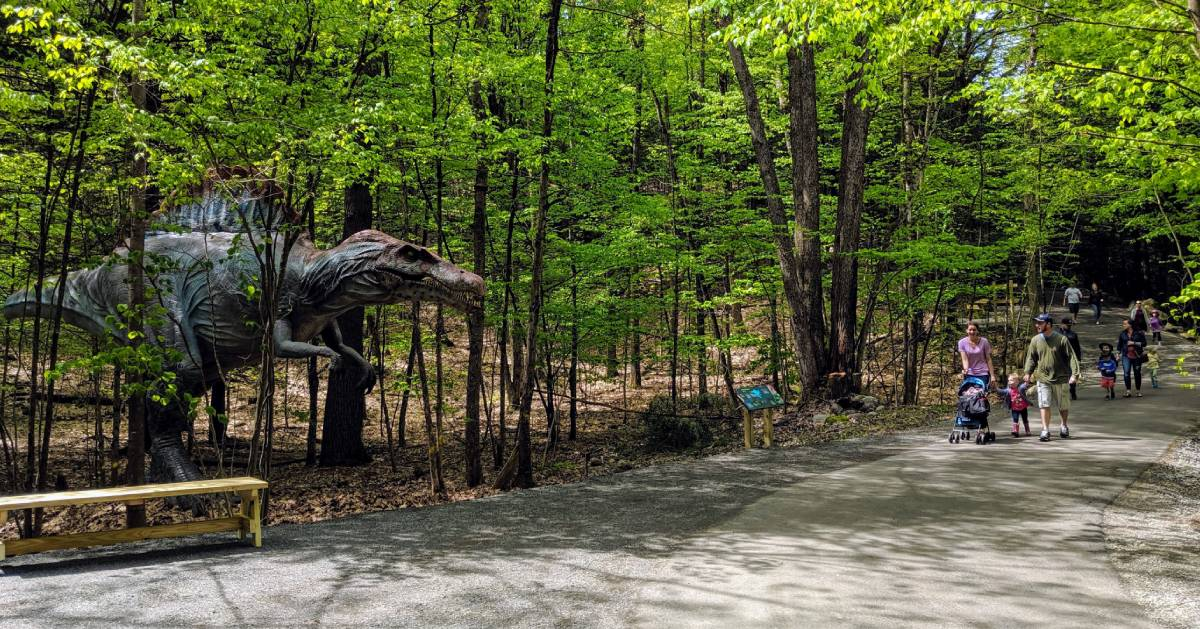 people on walking path by dinosaur