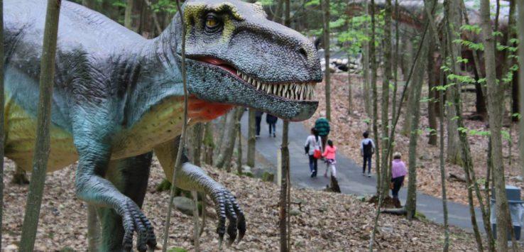 T-rex in park