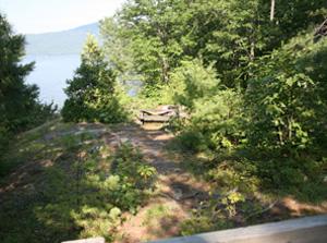 Vicar's Island Campsite 7