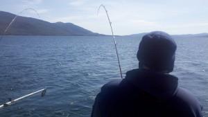 Fish on april 3.jpg