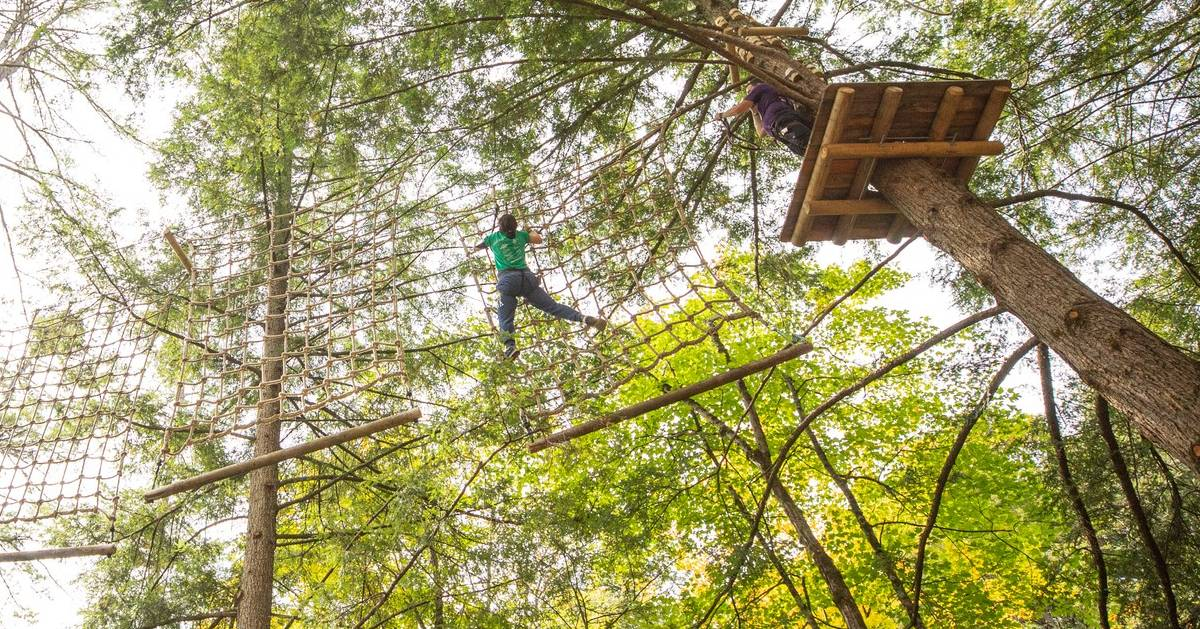 couple high in treetops