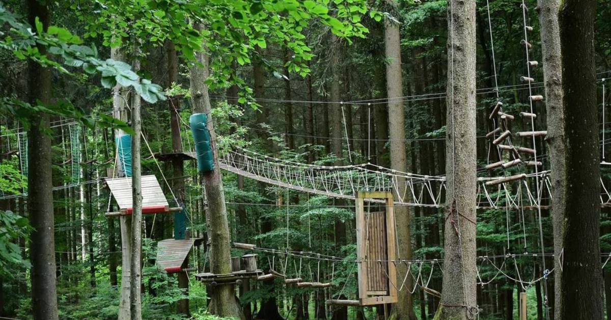 a treetop ropes course