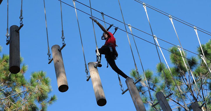 a person doing a tree top course