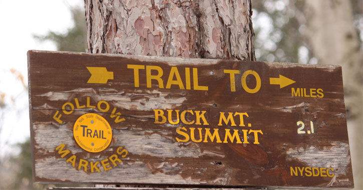 a sign posted on a tree pointing to the Buck Mountain summit