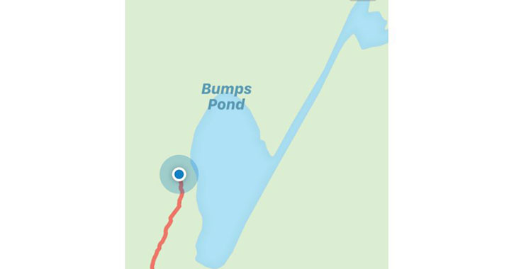 map screenshot of bump ponds