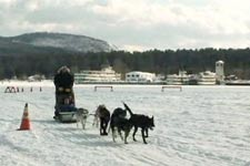 Lake George dog sled