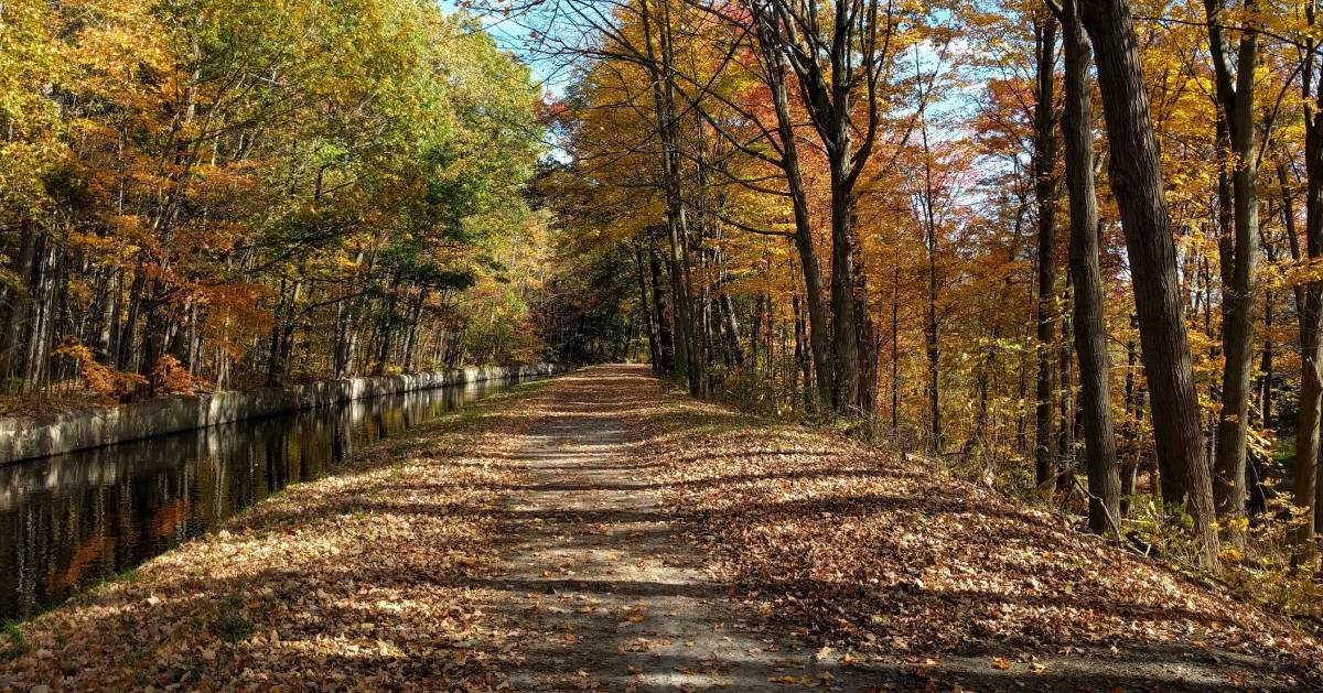 bike trail in the fall