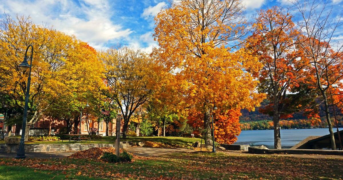 fall foliage in Shepard Park