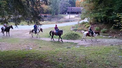 two people horseback riding in the woods