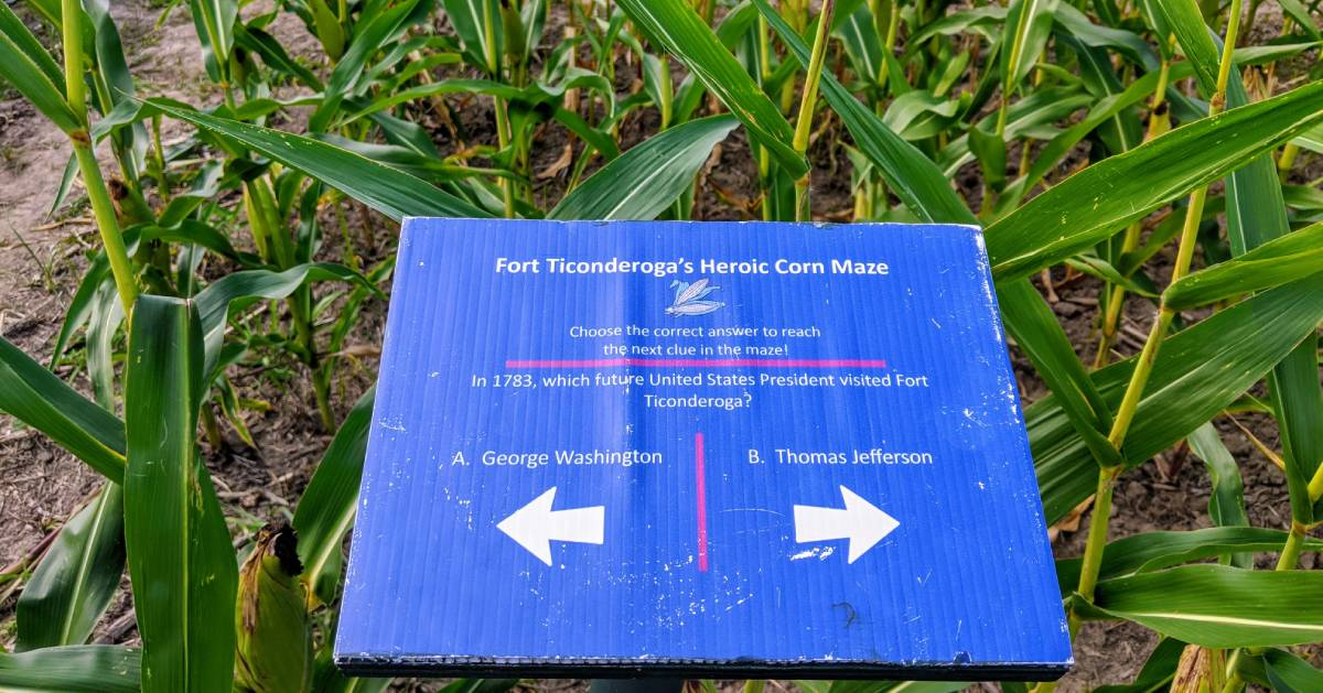 sign in corn maze with trivia question and clue on which way to go