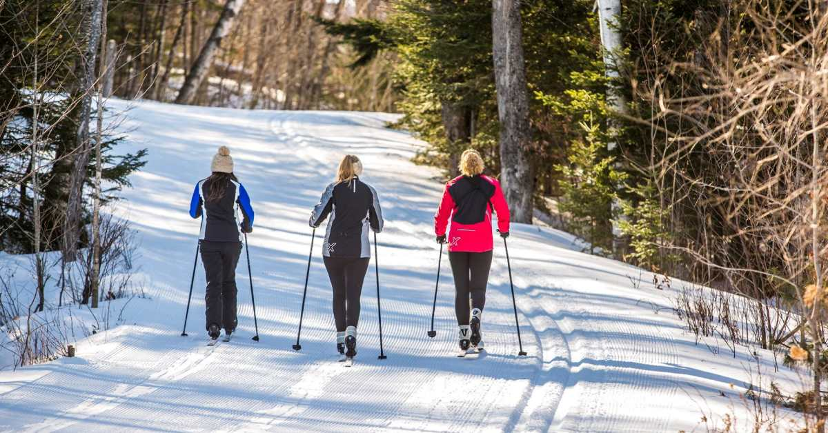 three cross country skiers on a trail