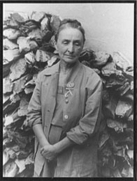 georgia o'keeffe portrait