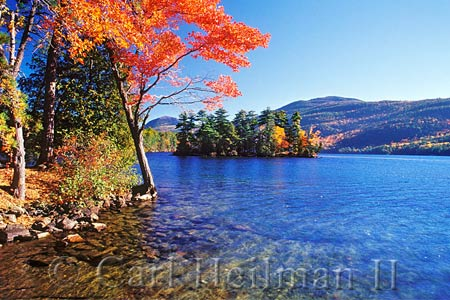 view of fall foliage from a shoreline