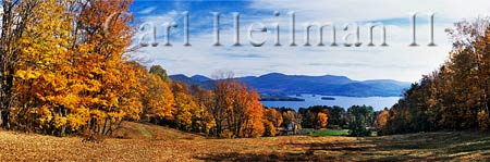 landscape view of fall foliage