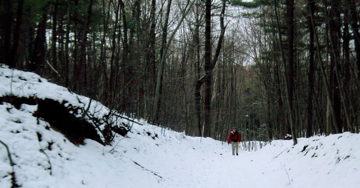 a man far away from the camera hiking in the woods