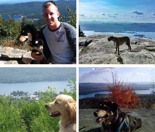 dogs hiking lake george
