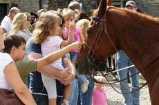 girl near a horse