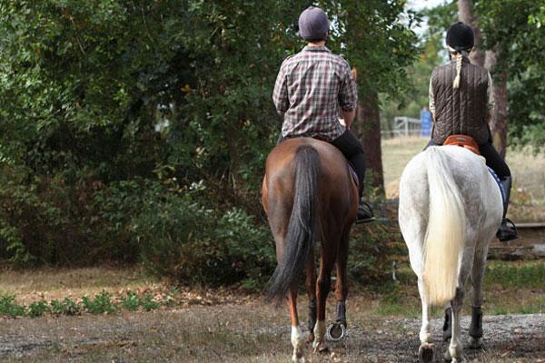 two horseback riders