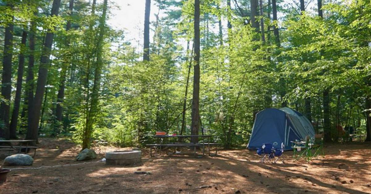 tent at a campsite with tables