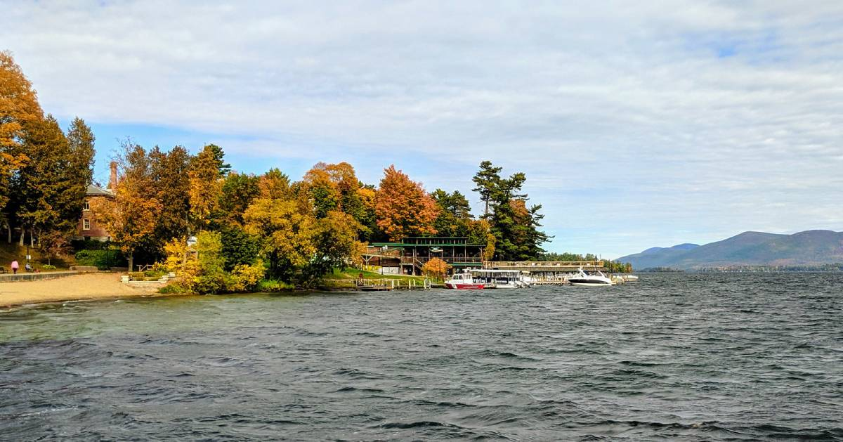 fall foliage in trees by lake