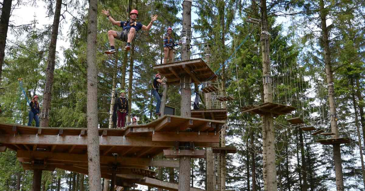 people on a treetop attraction