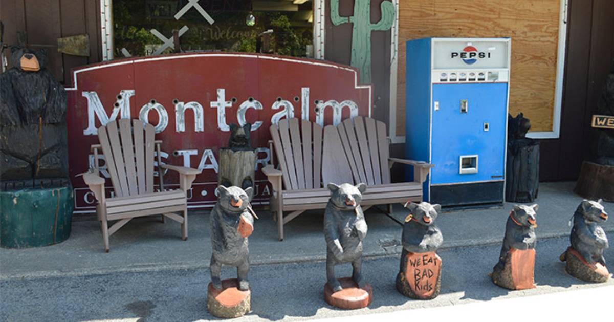 Montcalm sign and bear statues