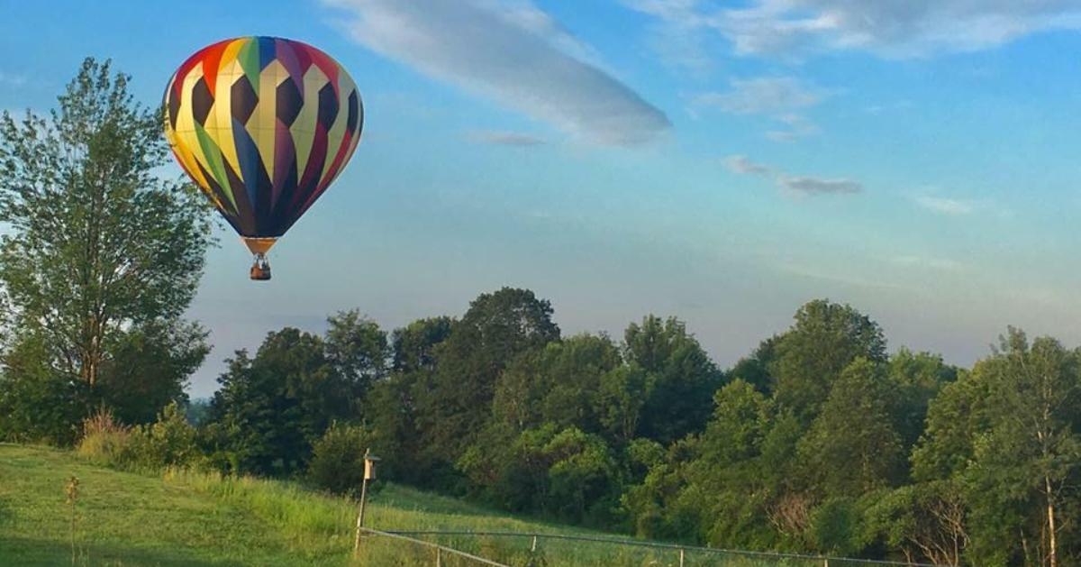 rainbow colored hot air balloon above a forest