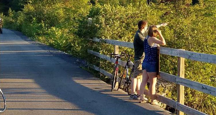 bike rental trip