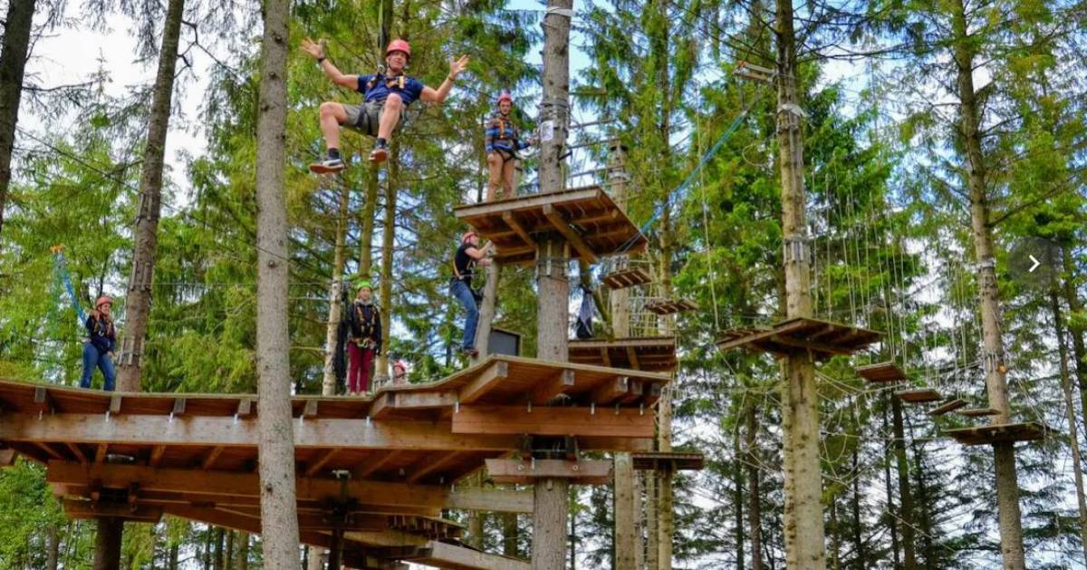 group on treetop course
