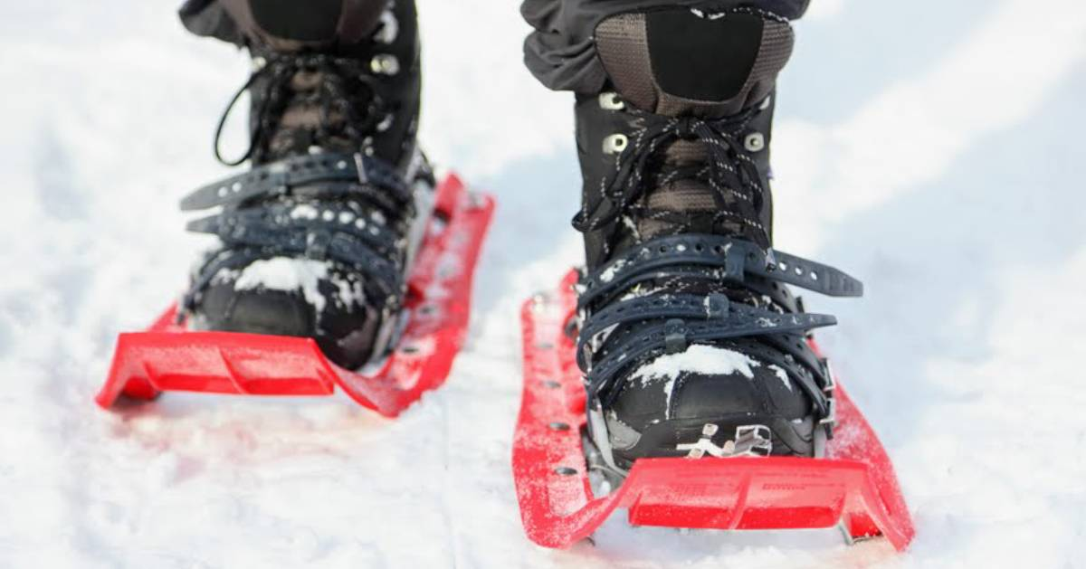 close up of red snowshoes