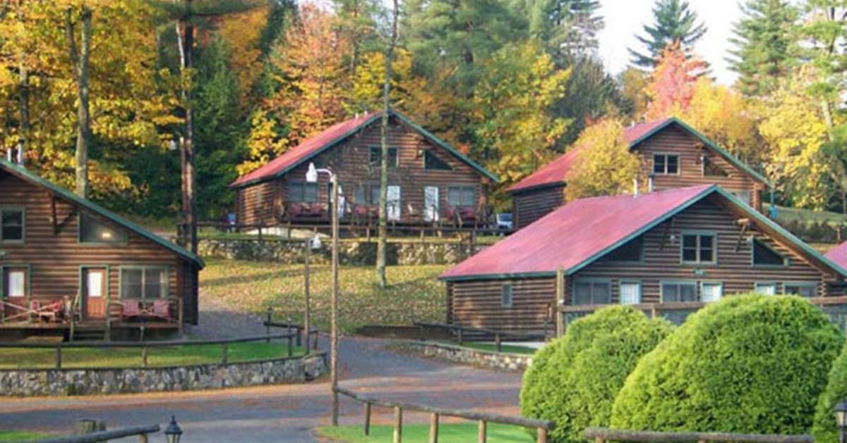 wooden cabins on a property