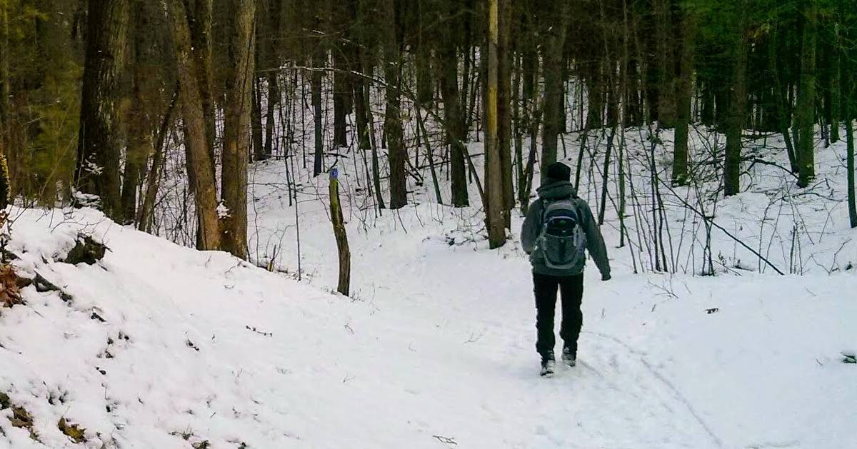 person hiking in woods in winter with backpack