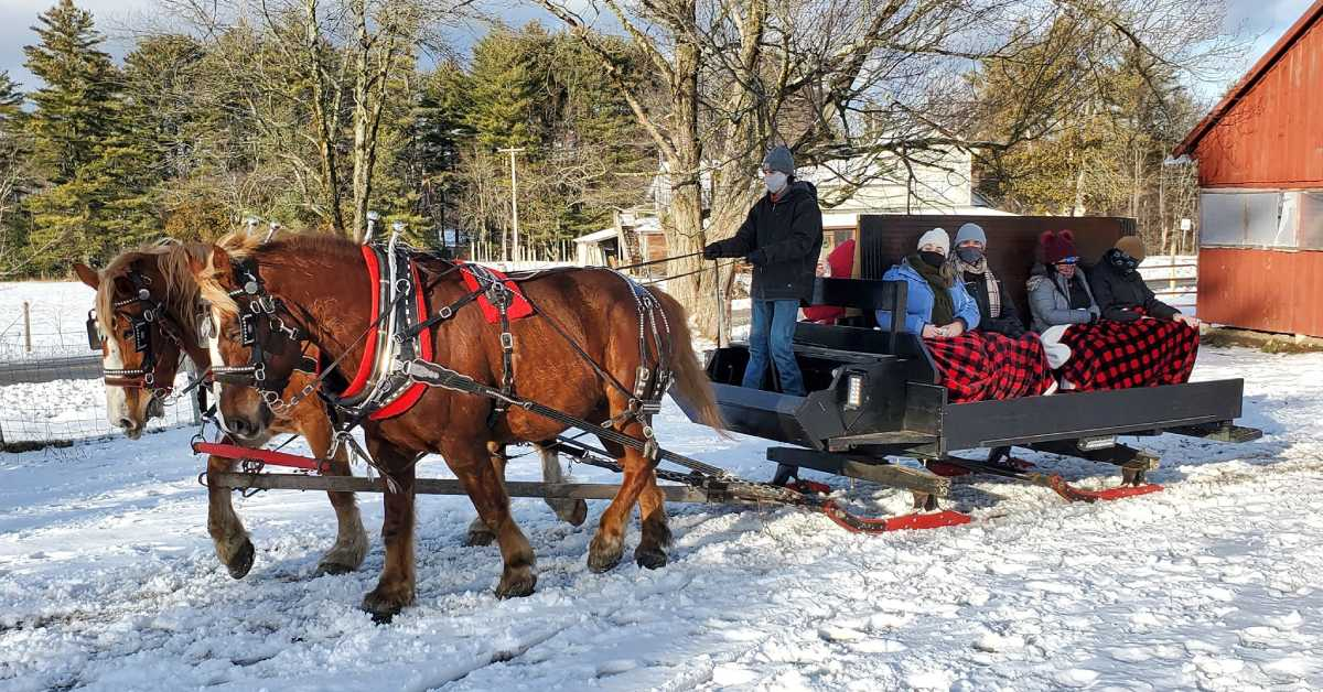 group of people on a sleigh ride pulled by two brown horses