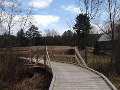 wooden walkway through the woods