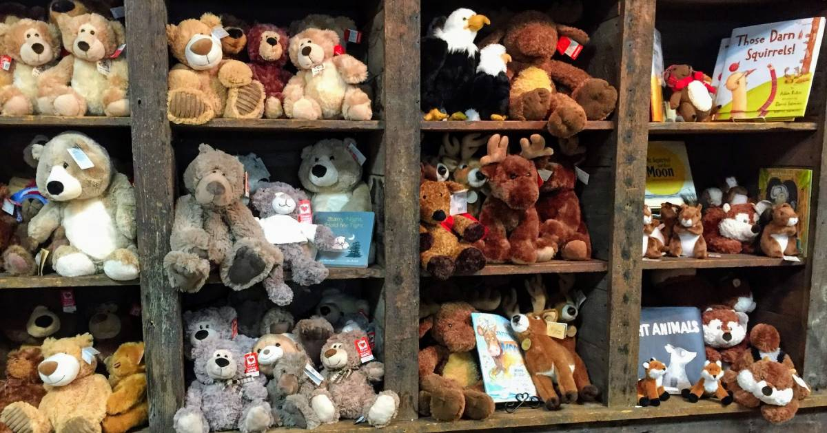 stuffed bears and books on shelves