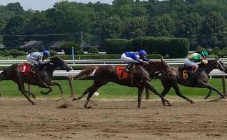 three horses racing at the track