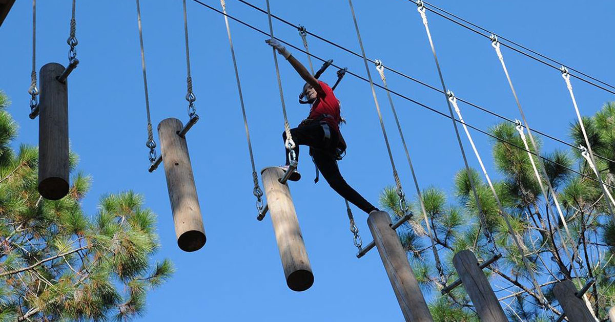 person doing a treetop adventure course