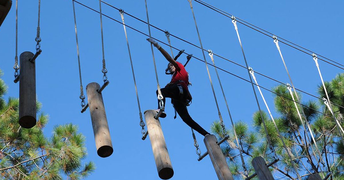 person doing a treetop course