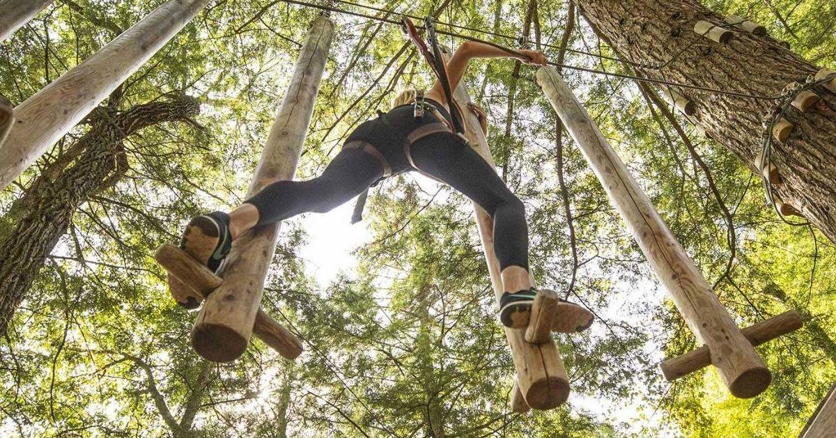 woman on treetop course