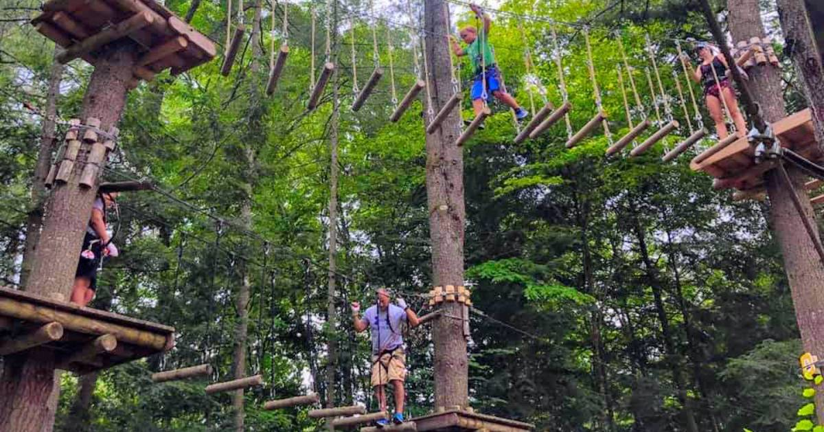 people on a treetop adventure course