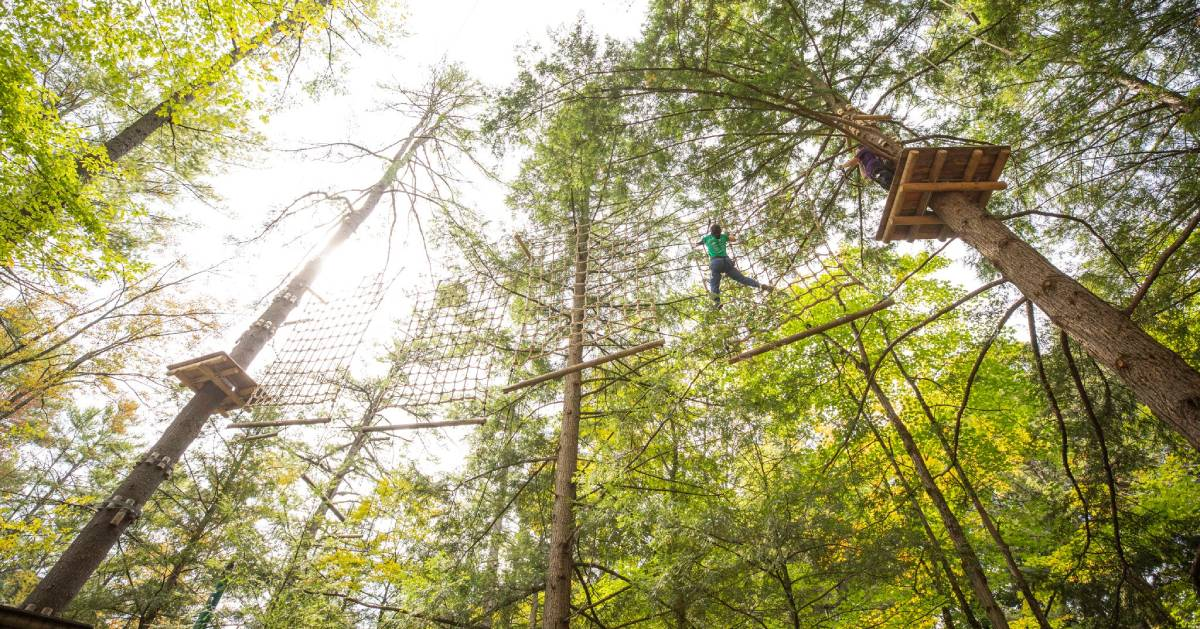 person high in the treetops on adventure course