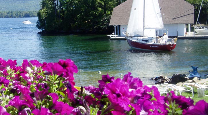 purple flowers in the foreground; private beach, a sailboat, and trees in the background