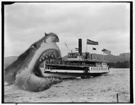 Jaws-attack-thumb-445x349-18920