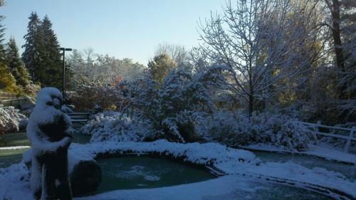 Lumberjack Snow 102911.jpg