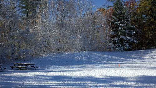 Lumberjack Snow 2 102911.JPG