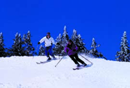 2 skiers.jpg