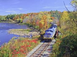 BL2 at North Creek Bridge 2 - Fall Colors_1.jpg