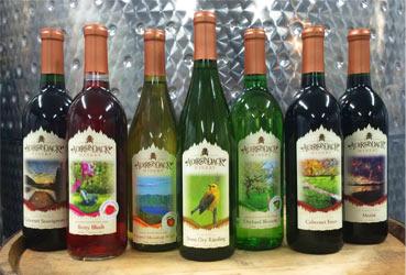 bottles-new.jpg