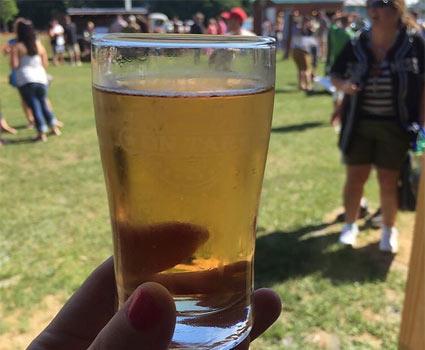 beer-sample.jpg
